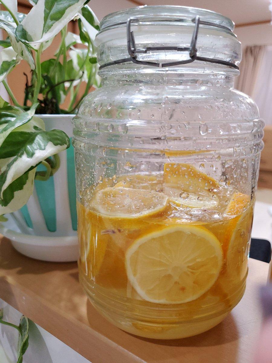 実は一足先にレモンも仕込んでる こちらも楽しみ~#自家製レモン酵素ジュースpic.twitter.com/D2p6Jc3x4x