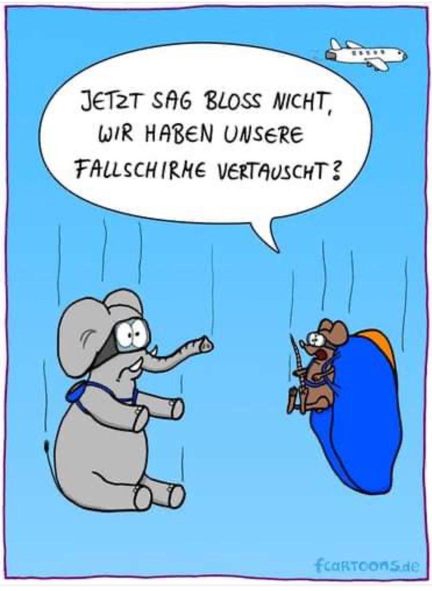 Fallschirmspringen Bayern #Gutschein Tandemsprung #Geschenk #Geschenkidee  #München #Landshut #Regensburg #Deggendorf #Cham  #Straubing #Amberg #Schwandorf #Ansbach #Würzburg #nuernberg #Fürth #Erlangen Niederbayern #Oberviechtach Neunburg vorm Wald http://tandemfun.depic.twitter.com/BCZ2xCXpwC