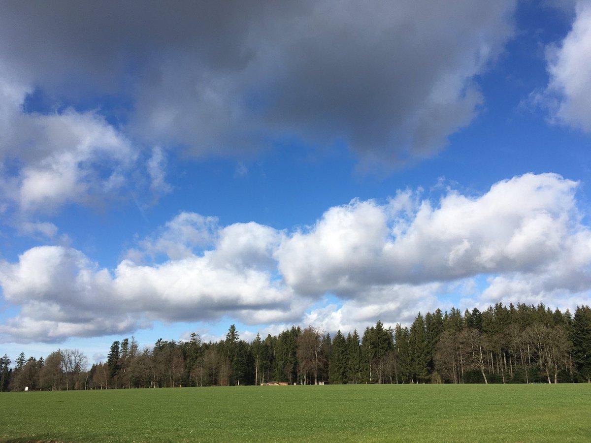Hunderunde  #wolkenbilderpic.twitter.com/rPl3BpXFc1
