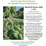 Image for the Tweet beginning: [Invitation presse] Le vignoble d'Issy-les-Moulineaux