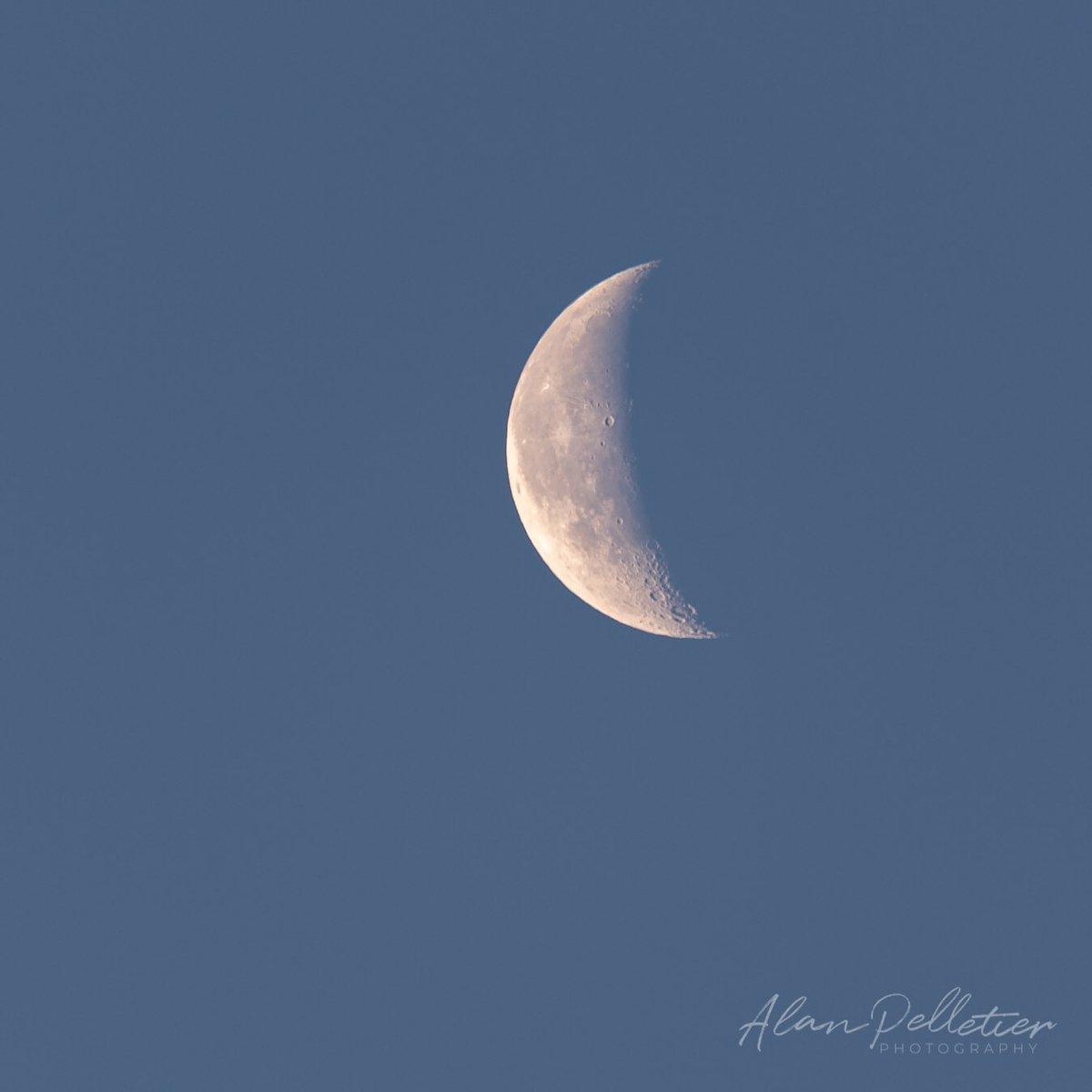 Recent shot of the early morning moon. #FridayFunDay #TGIF #MOON #MoonLovers #Moonshot #earlybird #bluehour #FridayMorning #morning #picoftheday #PHOTOS #ThePhotoHour #astronomy #photographyeveryday #nikon #nikonphotographypic.twitter.com/SrsOsgz8Bx