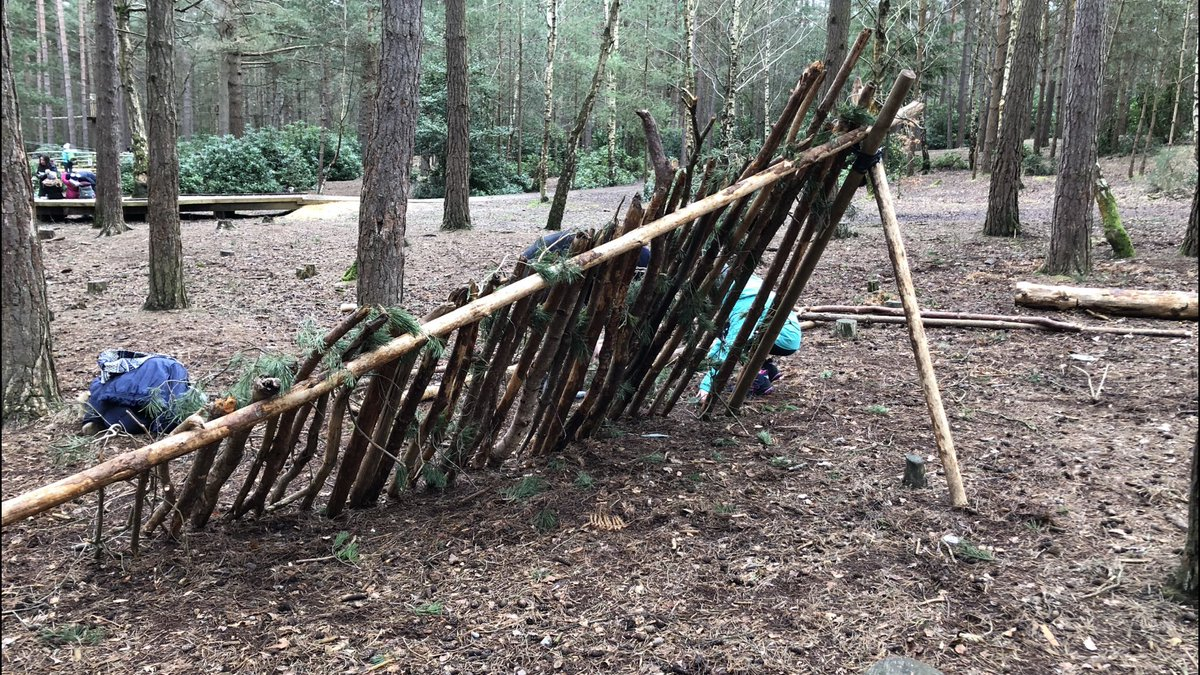 """No devices day today! We're den building instead. Building materials are a rare resource in this Pine Forest. When we'd finished, girls would approach & ask """"Excuse me, please may we have your sticks?"""". The boys approach was more direct: smash, grab, run off! 🌲 #dadventure"""