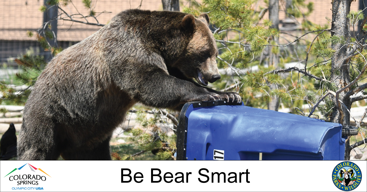 A new city ordinance goes into effect March 1 that requires residents & businesses west of I-25 to secure trash to reduce bear activity. Chances are you already meet the new requirement. Be sure you're informed & get full details at  @COParksWildlife