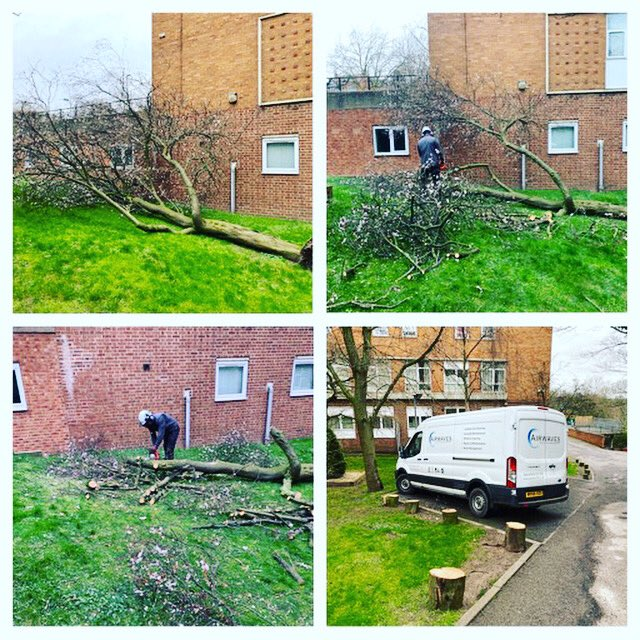 Tree works still be undertaken due to high winds the team was on site within the hour and all has been safely removed. #propertymanagement #facilitiesmanagement #treeservices #propertymanagers #propertymanager pic.twitter.com/BAP7gg7RRP