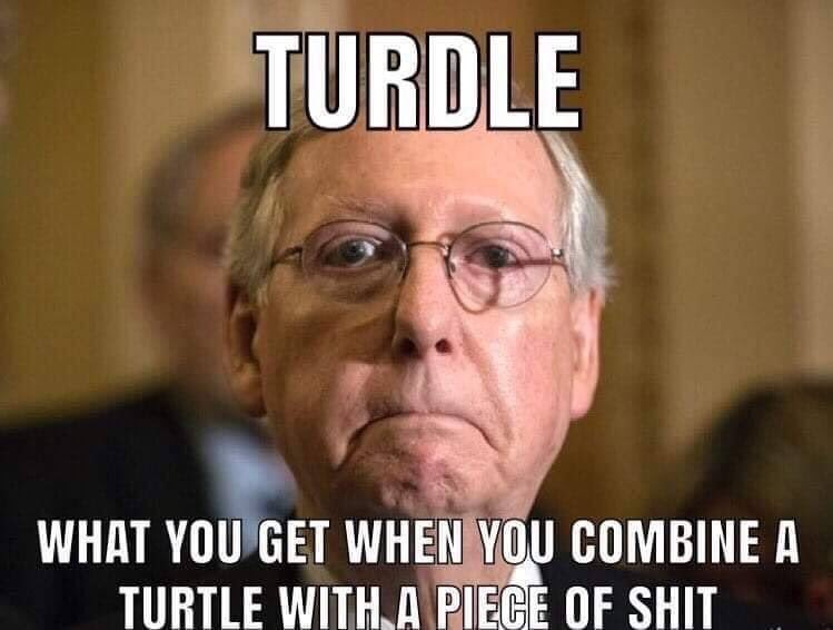 😂😂😂 #DitchMoscowMitch #KentuckyVoteTheTurdleOut