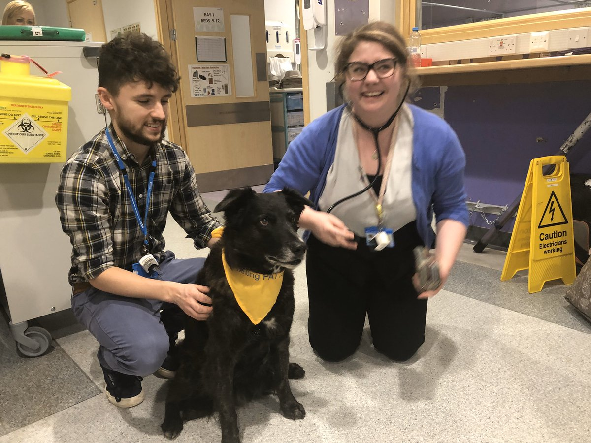 Scruffy came to visit today and the patients thoroughly enjoyed his company @A7Ward @Ng_Cass @vikster1980 @YvonneT14 #scruffy #NHS #patientcare #happymoments @himynameisjaneg @MFT_PatientExp @F12Mft @ward_a9 #medspecspic.twitter.com/Y77fL9A7Ou