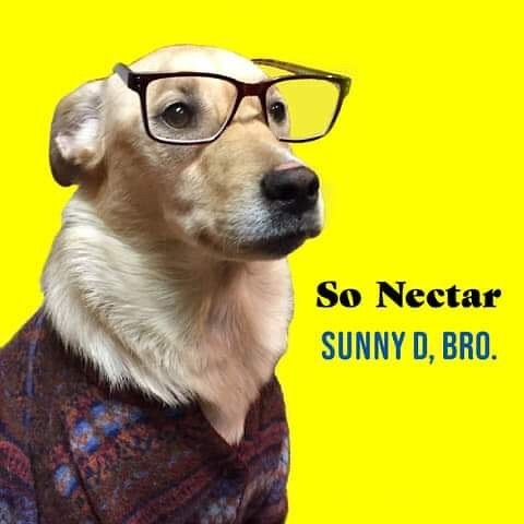 Today my new band So Nectar released our first tune. Check it out at http://sonectar.bandcamp.com have a Sunny D, Bros. #akronmusic #punkmusic #sadbois #sonectar https://ift.tt/2HIEVGPpic.twitter.com/M7Z8buGGlE
