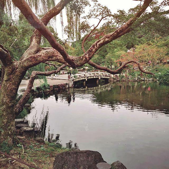 20.10.19  . . . . . #travelphotography #AColorStory #instatravel #aestheticedits #igtravel #travelgram #instatravelgram #letusgotravel #toldwithexposure #mytravelgram #mytinyatlas #exploringtheglobe #sheisnotlost #theglobewanderer #letsgoeverywhere https://ift.tt/2HNgsjEpic.twitter.com/hMYheAyilB