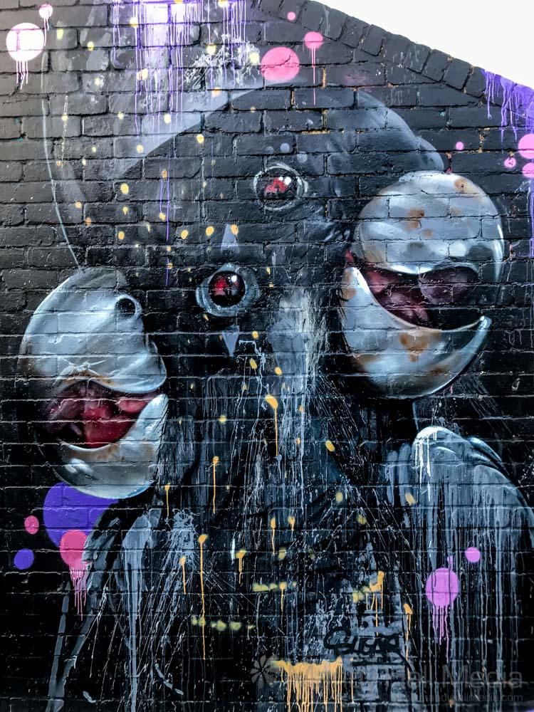 Black cockatoos -------------- #PhotoOfTheDay #dailyphoto #GraffitiArt #murals #streetart #graffiti #urbanart #spraypaint #urbanartist #creative #streetphotography #streetscape #urbanscape #instagram #parrotoftheday   See more at