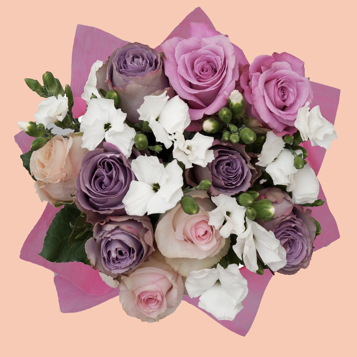 Happy Friday! We're currently falling into spring with our Harbour Sands Bouquet! http://bit.ly/harboursandsbouquet…   #bloomingmore #roses #moodforfloral #underthefloralspell #flowersoftheworld #floralinspiration #rosesofinstagram #floralphotography #floralstyling #flowerstagrammerpic.twitter.com/8uaPNZIar8