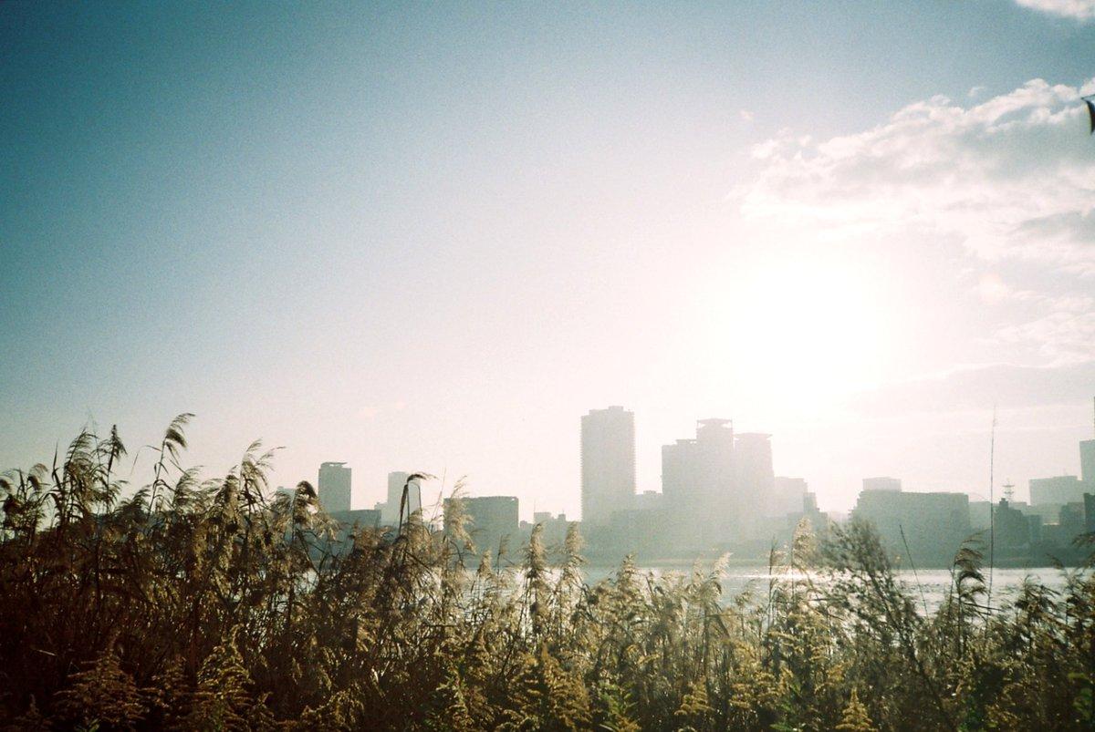 . 休みなのに早く目覚めた日。 . . #淀川 #朝活 #淀川河川敷 #フィルムカメラ #OLYMPUSXA #filmphotography #フィルム写真 #ig_street #reco_ig #写真撮ってる人と繋がりたい  #東京カメラ部  #vsco