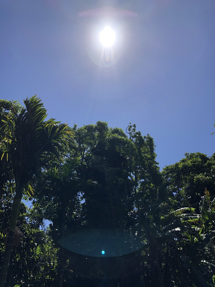 test Twitter Media - Clear blue sky's and breezy in haiku. #CMWeather #Maui #ConsciousMaui #Haiku #BlueSkies #MauiNokaoi https://t.co/py7L5qp3To