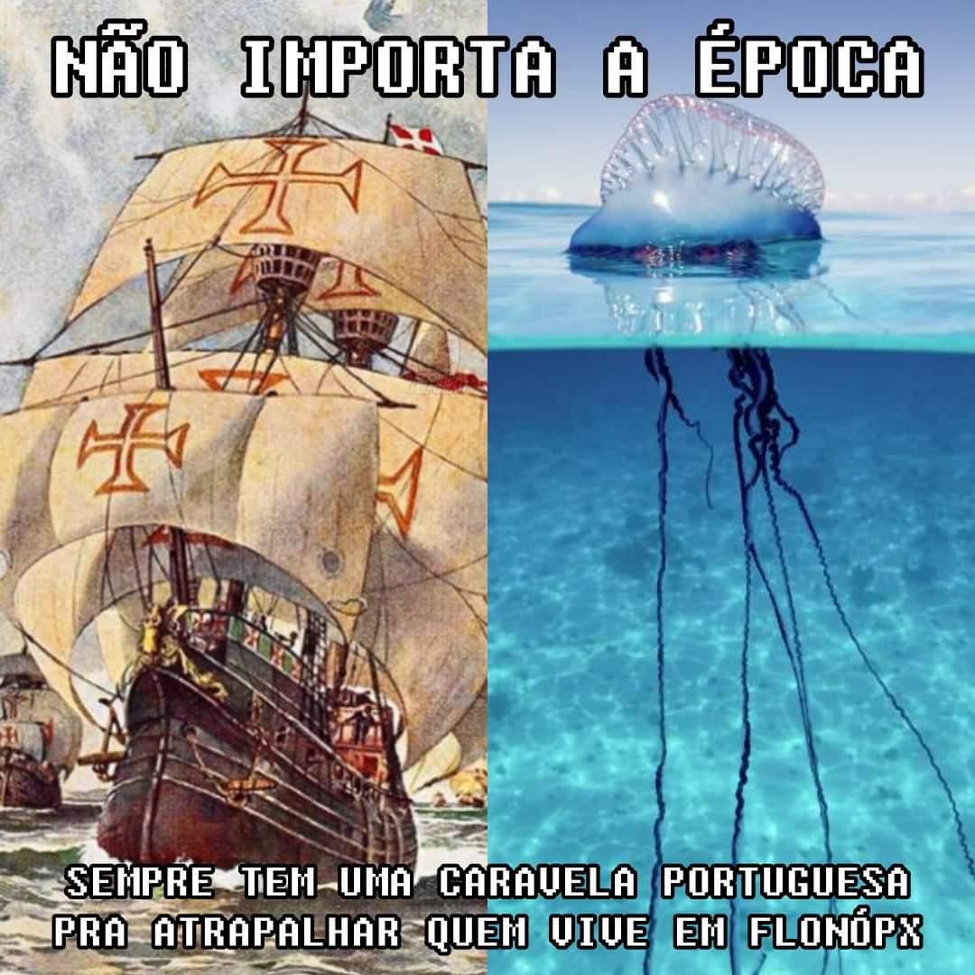 seja na praia ou na ressacada, português sempre atrapalhapic.twitter.com/TyXyaGp3X7