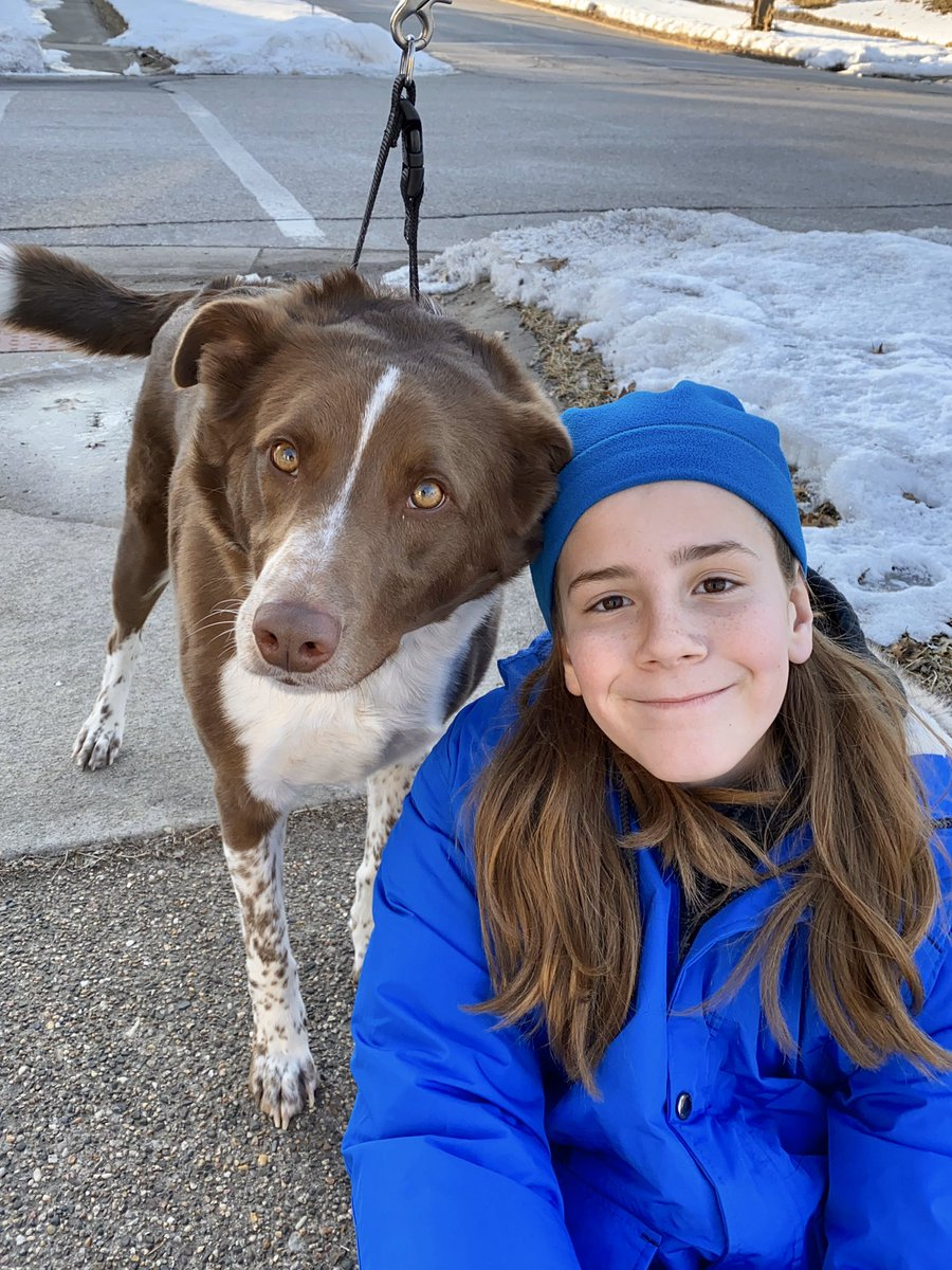 I pet Jack. He is a 2 year old Border Collie mix. His family says Jack picked them at the shelter, so they adopted him. He loves the kids and Hemingway the cat. Jack likes warmth. He lies by the heating vents with his legs in the air, or lets the kids wrap him in blankets. <br>http://pic.twitter.com/t88Mo3imQI