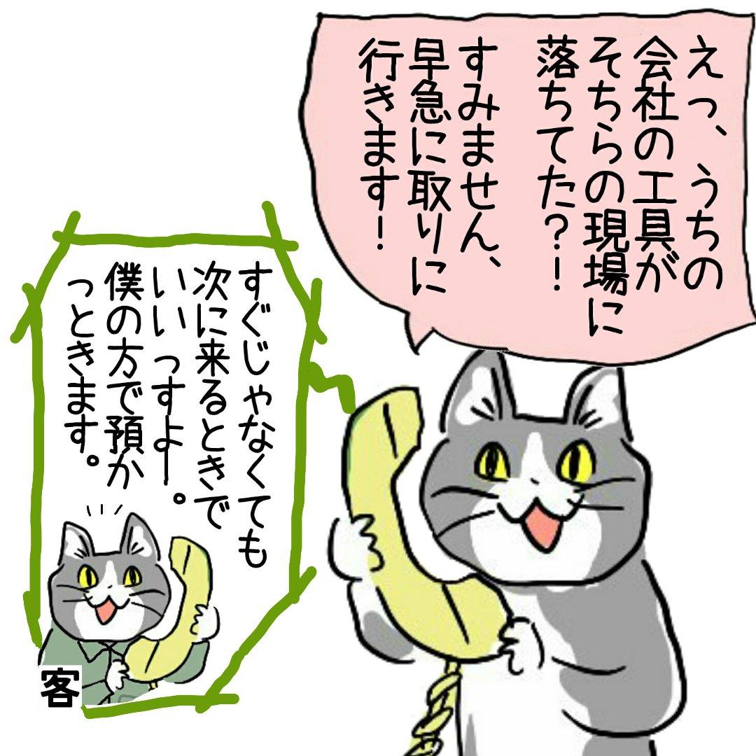 現場レベルで解決した小さなトラブルに過剰反応するマン参上 #現場猫