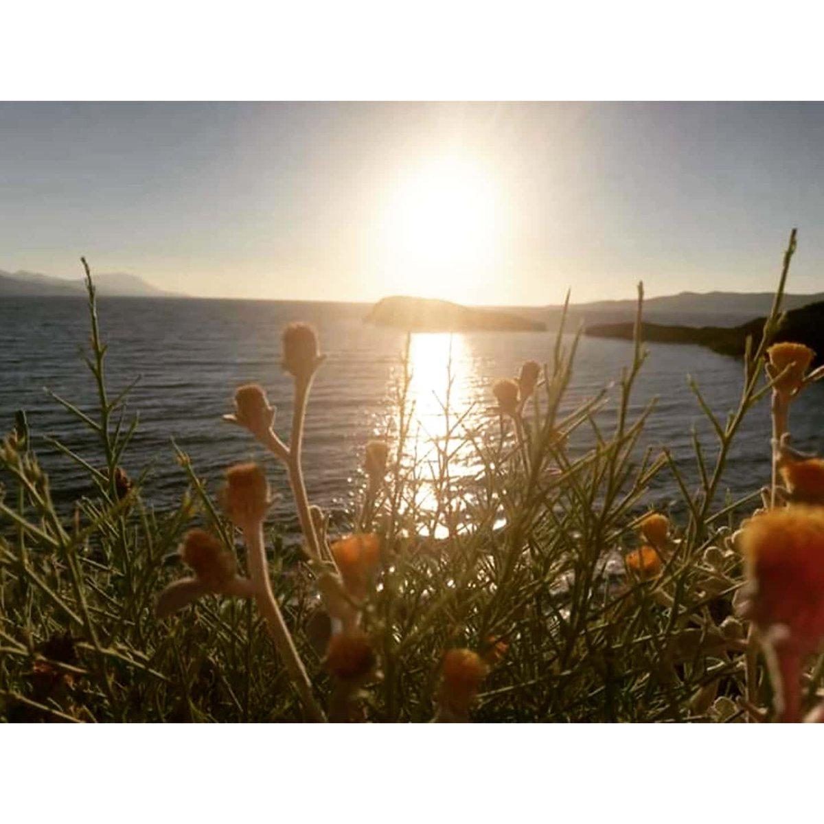 Sunset and Sea.  . . . . #trekking #trekkingphoto #artwork #artworks #artworks_artist #arttours #arts #galleryart #gallery #art #sailing #photography #photographysouls #photographyislife #sunset #photographylovers #naturelovers #photographers #nature #seapic.twitter.com/tXJgwZQJe0
