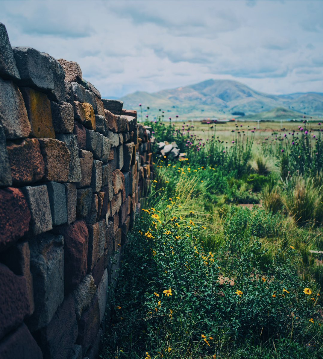 Choque entre la naturaleza y el paso de la humanidad! Crash between nature and the passage of humanity! #tiwanaku  #naturephoto  #naturephotography  @vsco  🌸 ------- #vsco #sony #sonyalpha #bealpha #sonyphotography #sonyphoto #photography #fotografia #photo #foto #southamerica