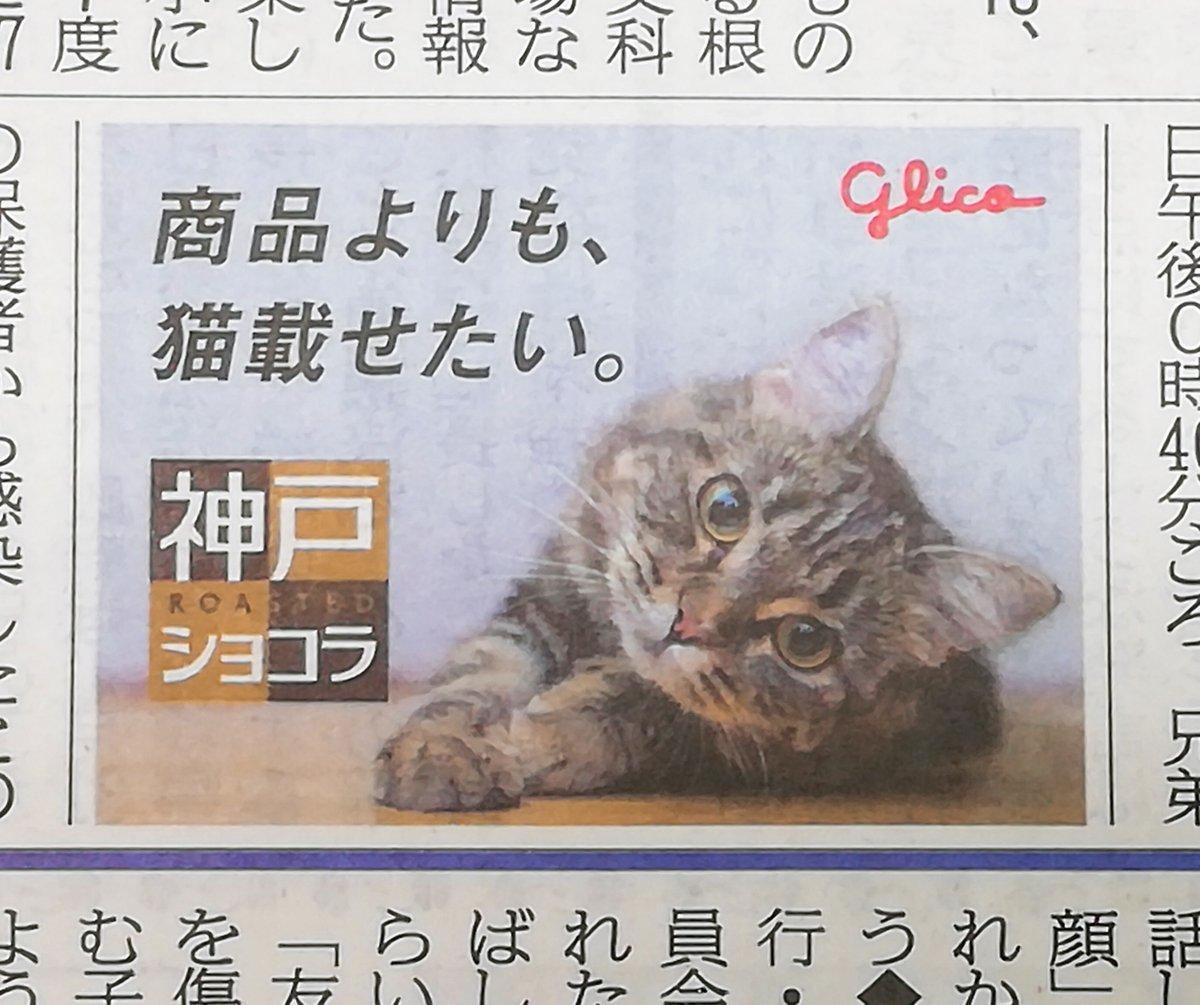 神戸新聞さんの投稿画像