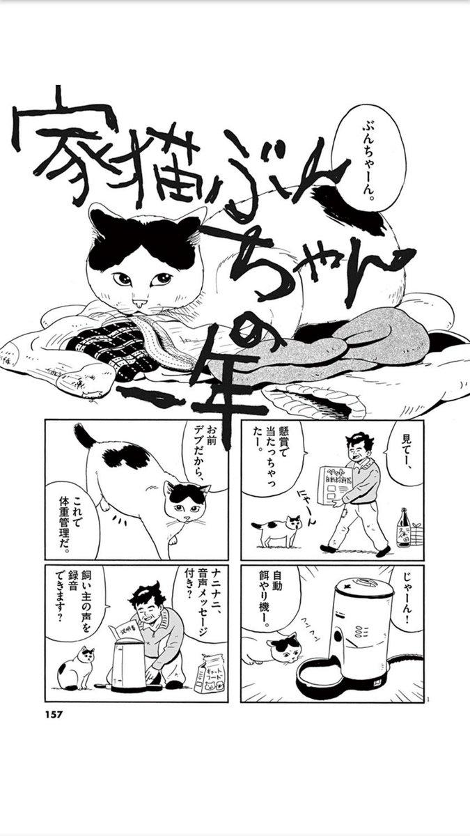 飼い主が孤独死してしまう猫の一年の話。#猫の日