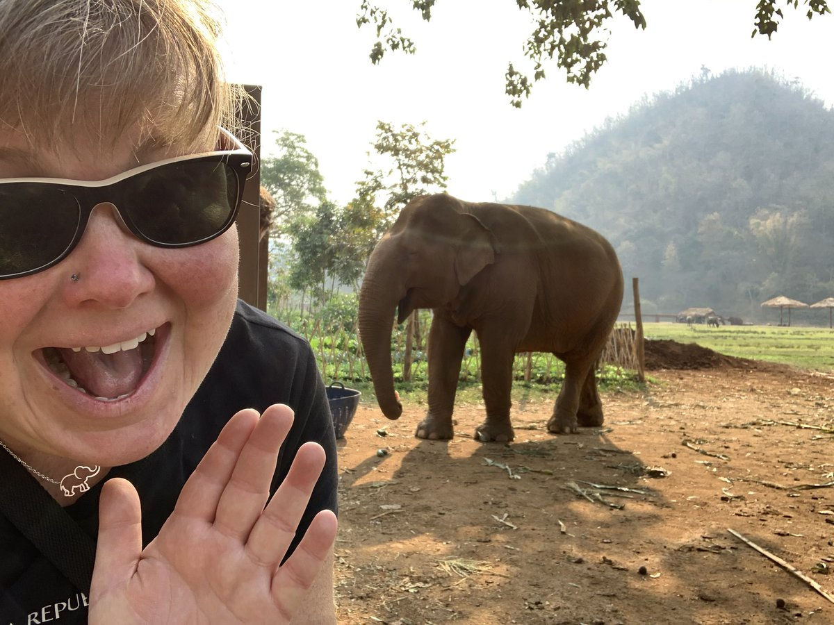 "My niece asked my BFF where auntie is and was told that ""auntie is with her elephants"". I don't love selfies, but I had to take this one with Bua Geaw so she could see that Mommy isn't kidding! #elephant #elephantrescue #volunteer #thailand #elephantnaturepark pic.twitter.com/DW0RnPcd2I"