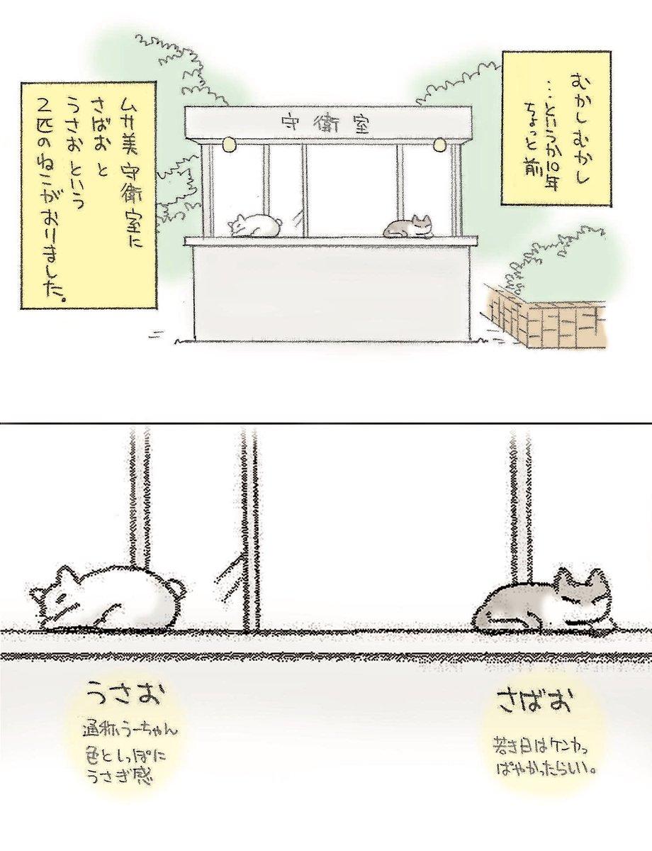 猫の日ということで。いつか描きたいと思っていた母校の猫のおはなしです(1/2)#猫の日
