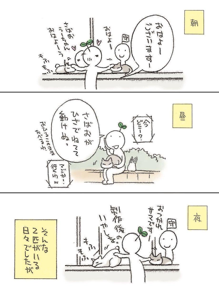 今津 奈鶴子@2020.7.16~22池袋東武個展さんの投稿画像