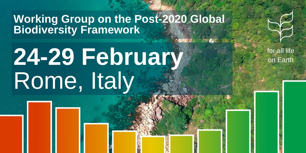 Starting on Monday, representatives from over 140 countries will meet in Rome to chart a path on safeguarding #biodiversity. 🌱🌳🌿 The negotiations will culminate in the adoption of the #biodiversity2020 framework at #COP15 in October. Learn more: cbd.int/conferences/po…