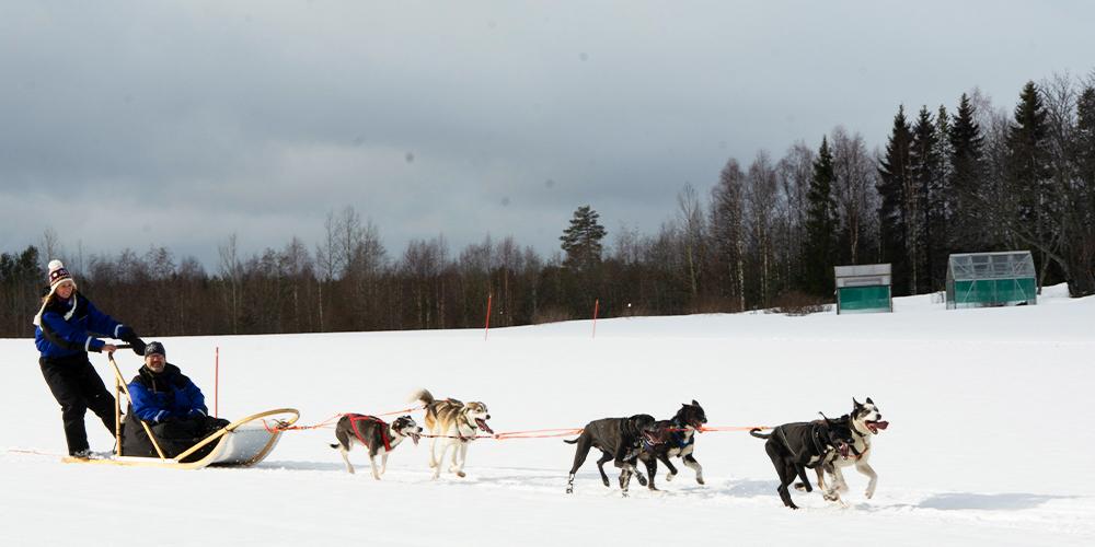 Der #Winter und seine Schneelandschaften inspirieren zum Entdecken der #Natur. Dieses Jahr zwar nicht bei uns, jedoch noch immer in #Finnland. Entdecke zusammen mit den Redakteuren des Touring Magazins zauberhafte Regionen 👉