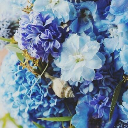 Hurry up Spring! Is anyone else a bit tired of this weather now?! . . . . . #springiscoming #whereareyouspring #winter #hurryupspring #flowerphotography #flowers #blueflowers #pretty #tiredofthisweather #saturday #weekend