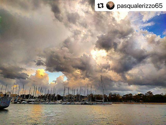 @pasqualerizzo65 with @puglia.love & @_pugliagram_ ・・・ #brindisiview #italiainvetrina #verso_sud #volgoitalia #volgo #volgoitaly #vivo_italia #ig_italy #landscape #landscape_love #landscapephotography #pugliawiew #cartolinesalentine #bestpugliapics #top_pugliaphoto #sud_addi…pic.twitter.com/lKgYNKHeCN
