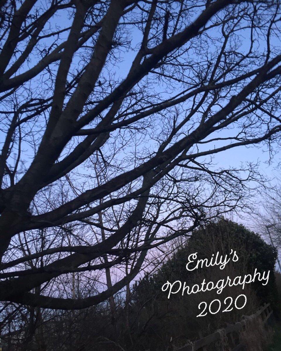 #photography #photooftheday #photo #photographer #nature #love #instagood #travel #art #instagram #picoftheday #like #natural #follow #photoshoot #naturephotography #beautiful #canon #travelphotography #wildlife #tumblr #portrait #landscape #selfie #professionalphotography #canon