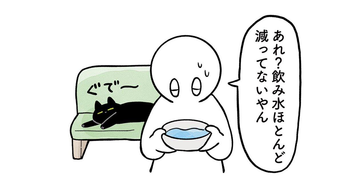 ねこに水たくさん飲んでほしい絵日記をブログに追加しました〜!忙しくてブログあんま書けてなかったですがなんとか…猫の日には…と思って…ゼエハア(息切)