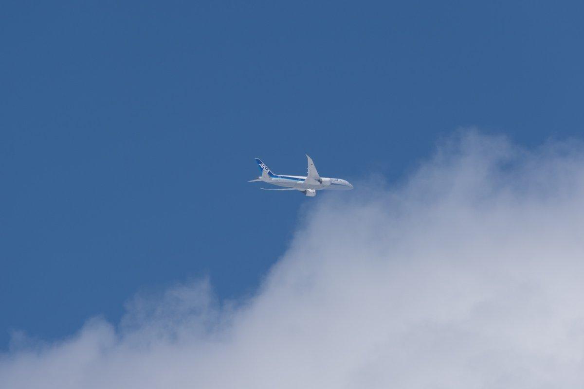 Lightroomのコントラストと彩度の連動ってこう言うこと。コントラストを上げるだけで空が真っ青になる現象、多分飛びもの撮ってる人は誰でも知ってると思う。CaptureOneやDxOみたいな欧州系のソフトだとこう言うのは出にくい。…なもんで逆にLRから乗り換えると少なからず戸惑う pic.twitter.com/3qYI5VkqqZ