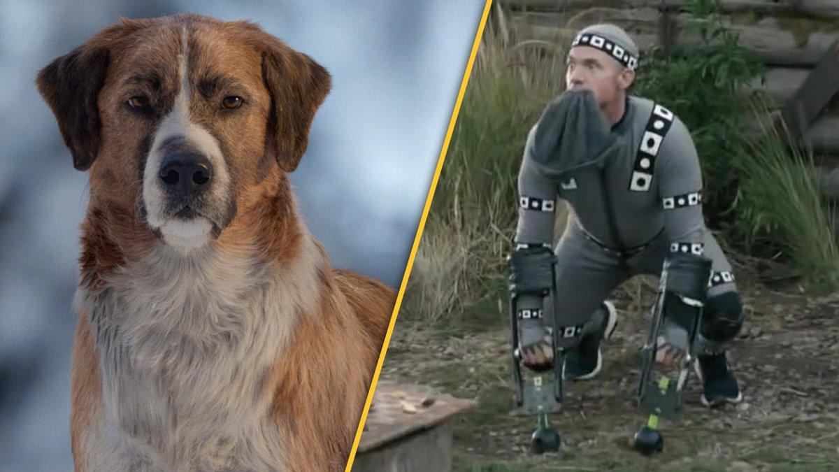 """Video zu """"Ruf der Wildnis"""": So albern sahen die Dreharbeiten mit CGI-""""Hund"""" aus http://dlvr.it/RQXfVjpic.twitter.com/fLiNphANCL"""
