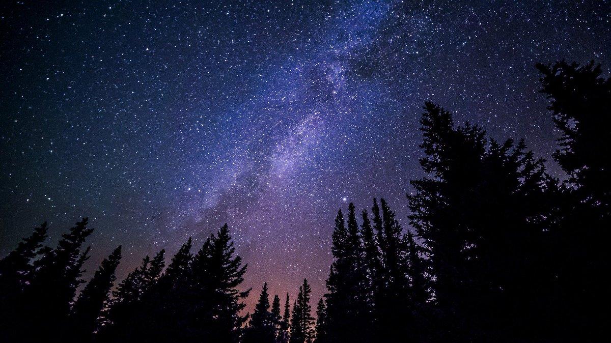 Ein Glück löste leuchtend aus Himmeln sich los und hing mit gefalteten Schwingen groß an meiner blühenden Seele...  Mir war so bang, und du kamst lieb und leise, – ich hatte grad im Traum an dich gedacht.  Du kamst, und leis wie eine Märchenweise erklang die Nacht...  Rilke pic.twitter.com/wSnFTI6UtU