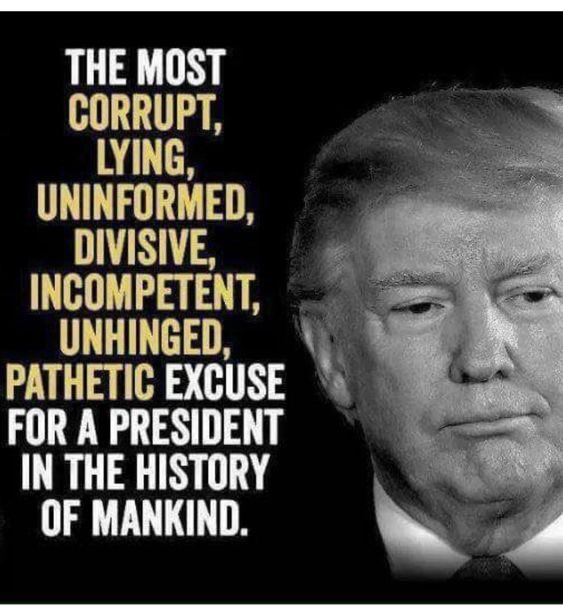 Yep..... 🙄💩😅🤭😂‼️ @POTUS @realDonaldTrump   Go, @SenWarren @ewarren !! #EnoughIsEnough   #TrumpIsADisgrace  #TrumpIsADrugAddict  #TrumpIsUnfit  #impeachandremove  #SaturdayThoughts #SaturdayMorning #Saturday #SaturdayKitchen  #ImpeachedPresident #addict #failure #fake #fraud https://twitter.com/PamKeithFL/status/1231212582201167875…