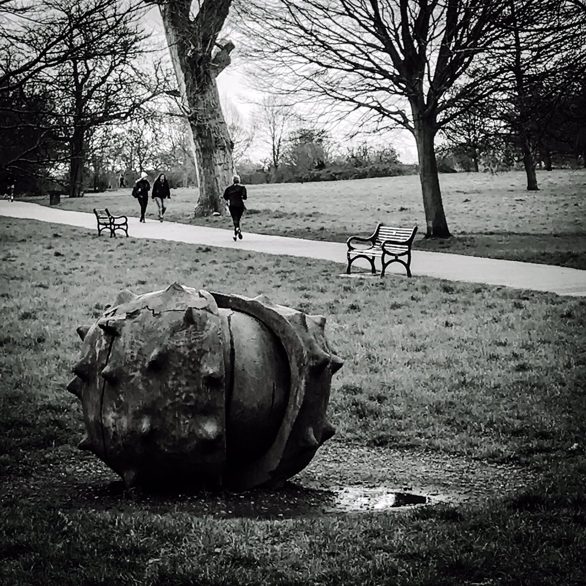 Love discovering new spaces and places ... and even finding a rather large conker #brockwellpark #southlondon #london #urbanphotography #photography #londonphotography