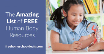 The Amazing List of FREE Human Body Resources! http://bit.ly/2MeVivZ  #freehomeschooldeals #fhdhomeschoolers #childhoodunplugged #learnathome #howwehomeschool #homeschoolmama #homeschoolcurriculum #homeschoolfun #homeschooldays #hssciencepic.twitter.com/DDbrziyYbH