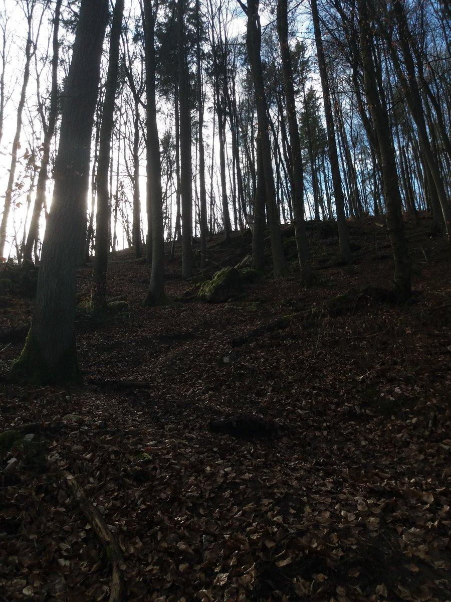Wir waren heute etwa 4 Kilometer spazieren und es war so schön *-* Manche Felsen haben ausgesehen als wären wir in einem Märchenwald *-* pic.twitter.com/RiOnvDiLW2