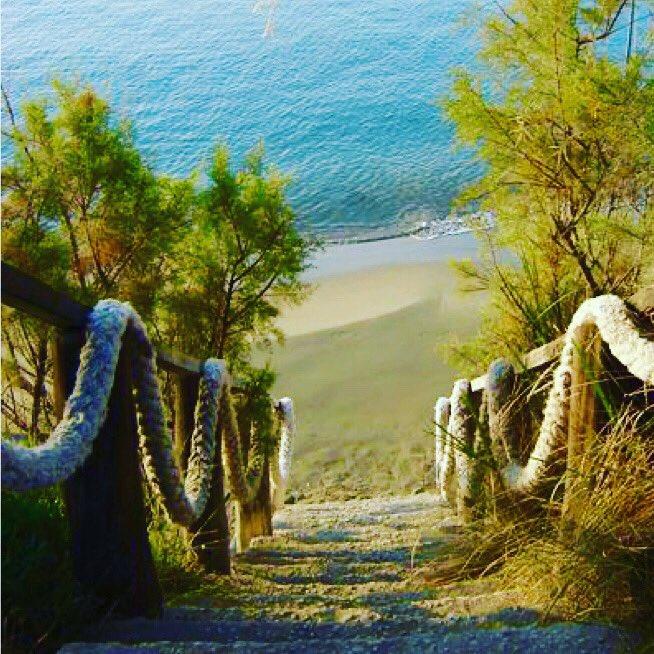 Stairs to paradise! 🌴  #zante #zakynthos #greece #beach #bluesea #picoftheday #instapic #instagreece #instagood #hellas #adoregreece #ionianislands #topgreecephoto #greekislands #visitgreece #visitzakynthos #visitzante #ioniansea #summer2020 #zante2020 #zakynthos2020 #followus