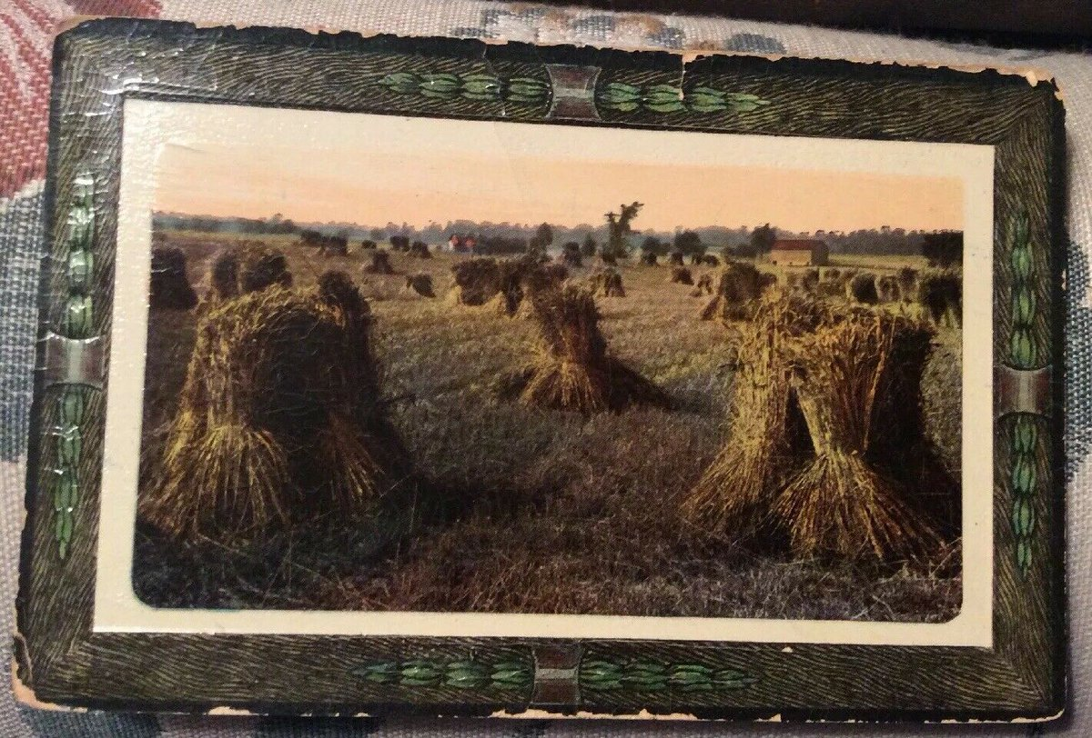 Antique Postcard Victorian Germany 1912 Wheat Field Bales Stalks Card - Antique Card! - https://vintagepaper.store/antique-postcard-victorian-germany-1912-wheat-field-bales-stalks-card-antique-card-9/ … BUY/BID ON EBAY!   View on eBay   Item specifics  ...pic.twitter.com/ahoh6oQzrW