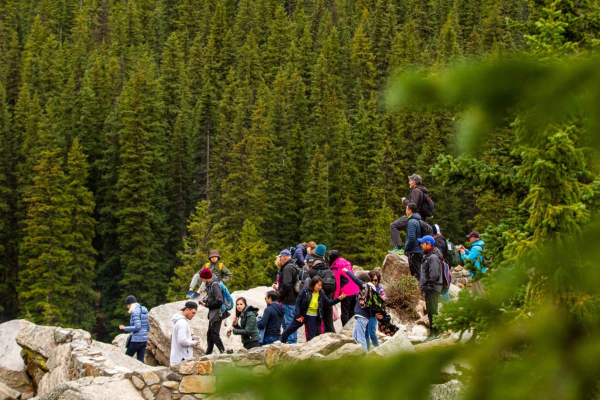 Banff grappling with high visitation http://dlvr.it/RQYPK6pic.twitter.com/LgxJcZkhva