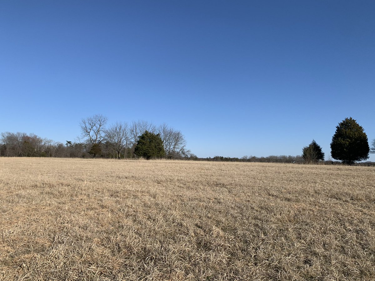 Today we went to the site of the First Battle of Bull Run. Going outside is good!