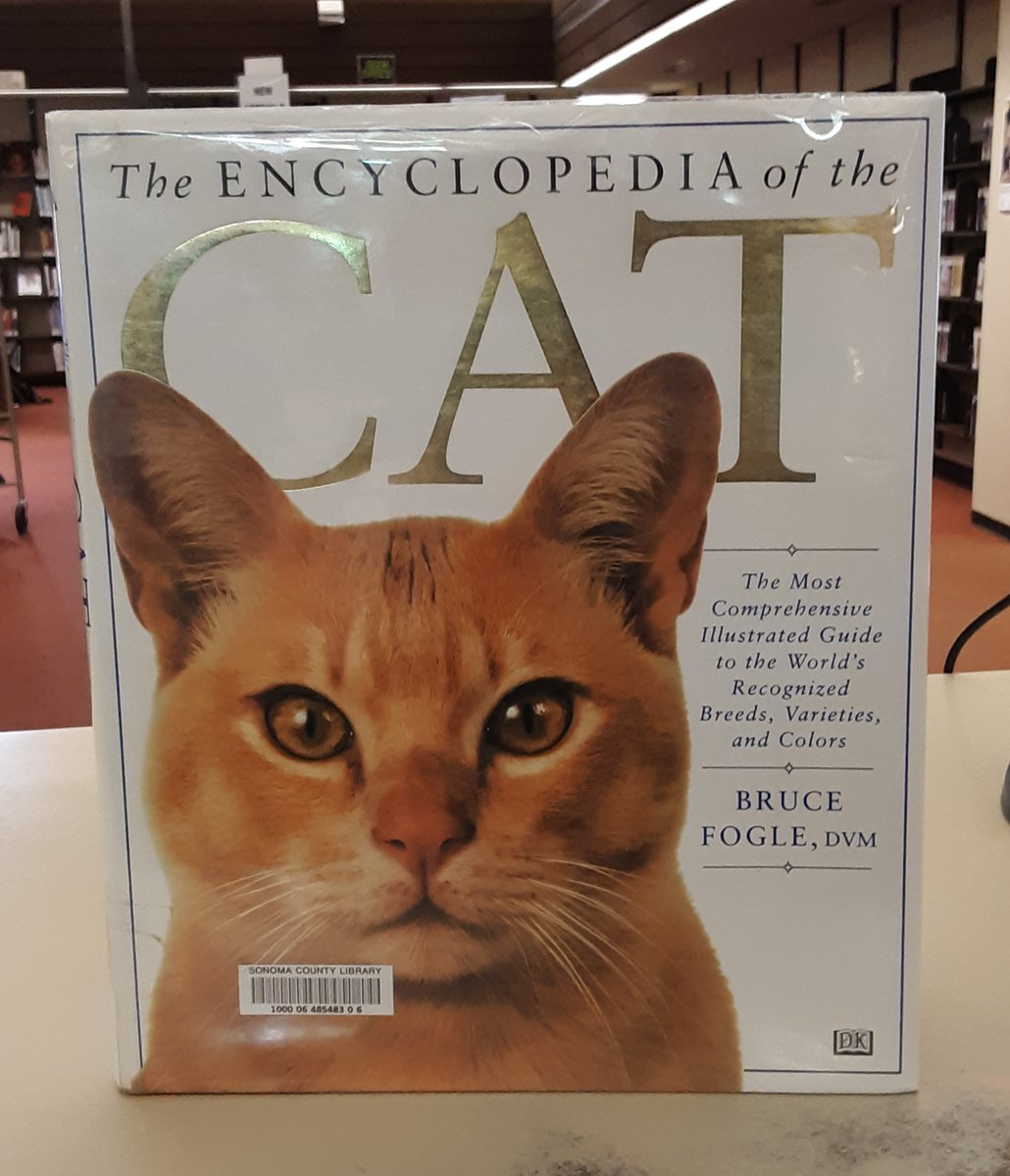 How is a book of beautiful cat pictures better than peanut butter on pancakes? Find out in the Encyclopedia of the Cat. http://ow.ly/J7E650ytmoL  #caturdaypic.twitter.com/9fGaSS9GQm