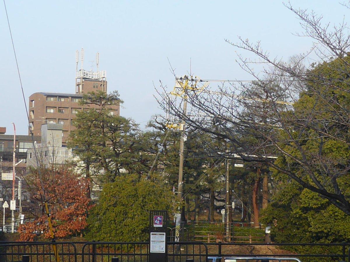 2020年02月23日(日)の #京都 #高野川 越しに見える #下鴨神社 参道入口付近