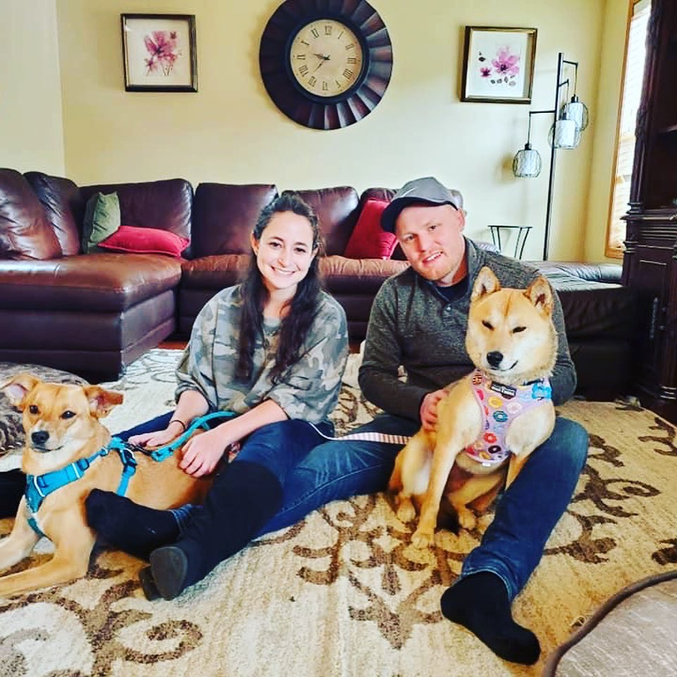 Happy tail! Roxy, on the right, is on adopt trial! A new sister and family!  So grateful to our foster. Not a day goes by where we aren't grateful for them. Join us! The rewards are worth it!   #roxyrockson #jindo #loveislove #goodluck #seattle #bellevue #rescuedog