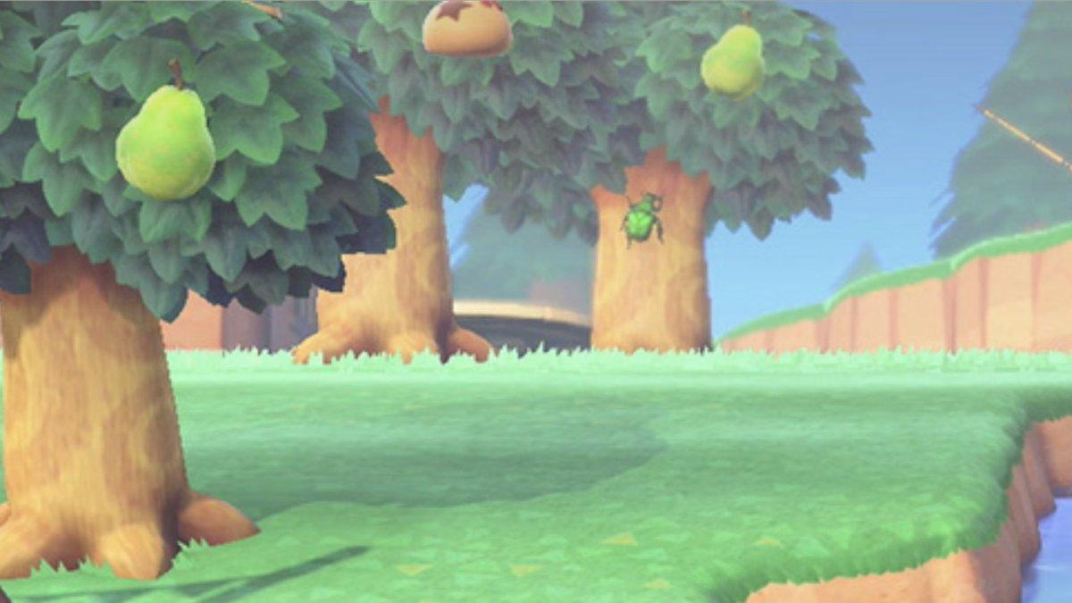 森 ベル 木 あつ の なる