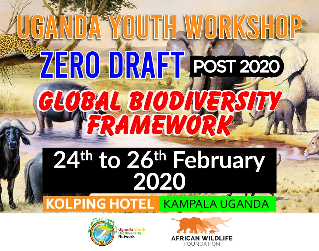 Tomorrow we are starting our Youth Workshop on Zero Draft Post 2020 Biodiversity Framework with support from @AWF_Official #Biodiversity2020 #BiodiversityNeedsYouTH