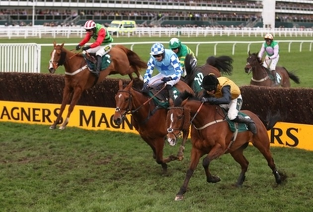 In the latest of GG's Cheltenham Festival previews, @ryanOTHx analyses the main contenders in the Grand Annual Handicap Chase and gives us his Cheltenham tips  https://gg.co.uk/news/features/cheltenham-tips---best-bets-for-the-grand-annual-chase…  #CheltenhamFestival #Cheltenham #TheFestivalpic.twitter.com/KPPWJVIz8P