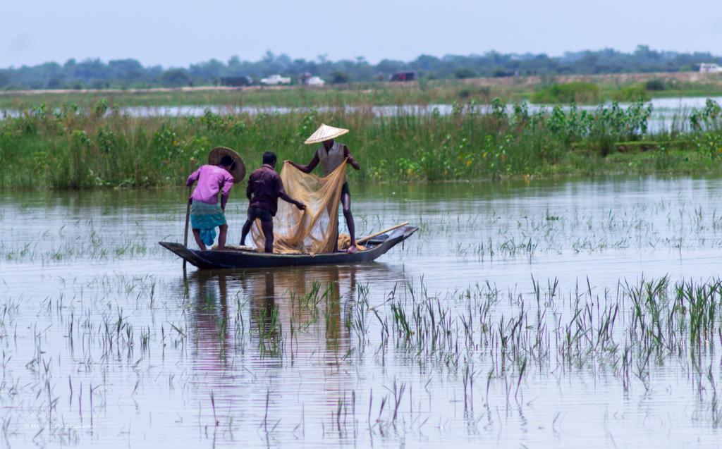 Water transportation... . . . #bangladesh #bangladesch #sylhet #boats #boat #boating #sea #boatlife #yacht #fishing #yachts #travel  #river #trip #photo #photography #bd #bangla #landschaftsfotografie #naturfotografie #onlyinbengal   #mahadephotography #mahade_photographypic.twitter.com/TjGGFnaNp1
